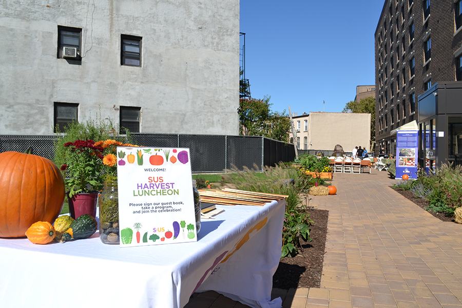 Celebrating Health, Opportunity, and Community Through Urban Farming