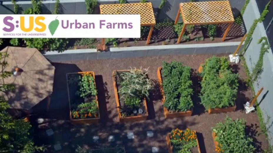 First Fridays with Urban Farms