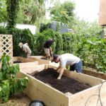 Urban Farms Program for Homeless and Disabled